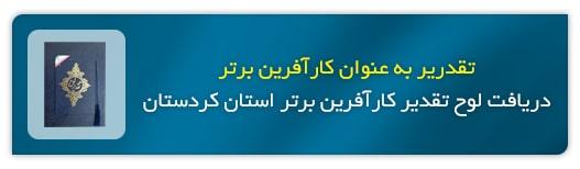 کارآفرین برتر استان
