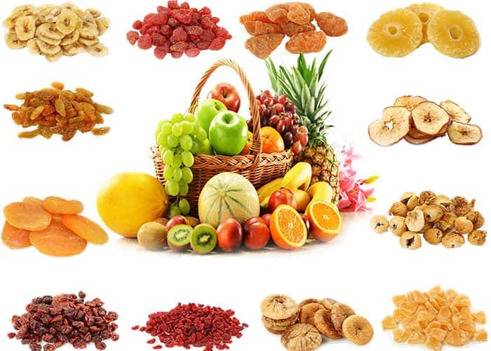 قیمت میوه خشک کن فوما FU-731