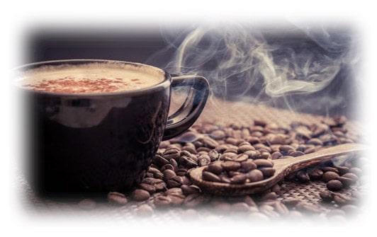 خرید آسیاب قهوه 300 وات 200 گرم فوما Fuma FU-1759